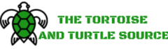 THE TORTOISE AND TURTLE SOURCE